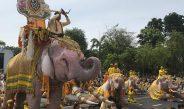 ช้างคชลักษณ์ 11 เชือก เดินเทิดไท้องค์ราชันย์ ถวายพระพรชัยมงคล ในหลวง รัชกาลที่ 10 หน้าวัดพระศรีรัตนศาสดาราม